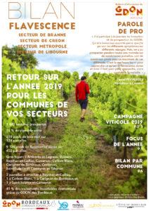 Bilan Flavescence 2019 : secteurs de Branne, de Créon, de Libourne et de la Métropole