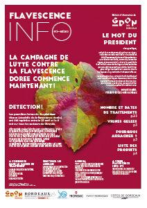 Flavescence Info n°2 – 2021