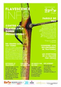 Flavescence Info n°6 – 2019