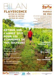 Bilan Flavescence 2019 : secteurs Guîtres, Coutras, Lussac