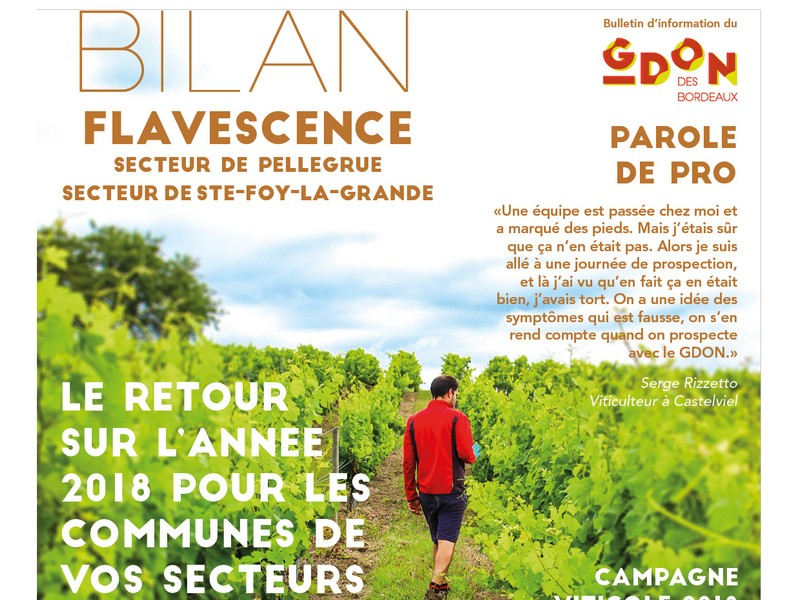 Réunions de secteurs de l'ODG Bordeaux et Bordeaux Supérieur