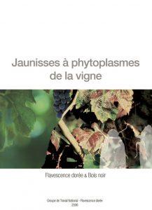 Plaquettes sur les jaunisses à phytoplasme de la vigne