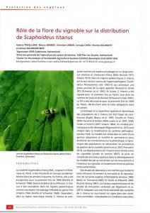 Etude sur la distribution de Scaphoideus titanus