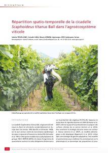 Etude sur la répartition de Scaphoideus titanus