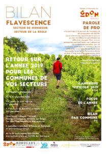 Bilan Flavescence 2019 : secteurs Monségur et La Réole