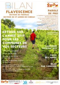 Bilan Flavescence 2019 : secteurs de Fronsac et de Saint André de Cubzac