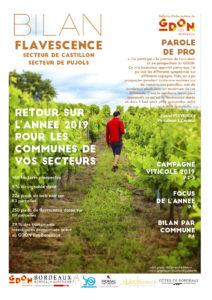 Bilan Flavescence 2019 : secteurs de Castillon et de Pujols