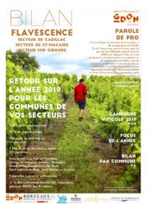 Bilan Flavescence 2019 : secteurs de Cadillac, de sud Gironde et de Saint Macaire